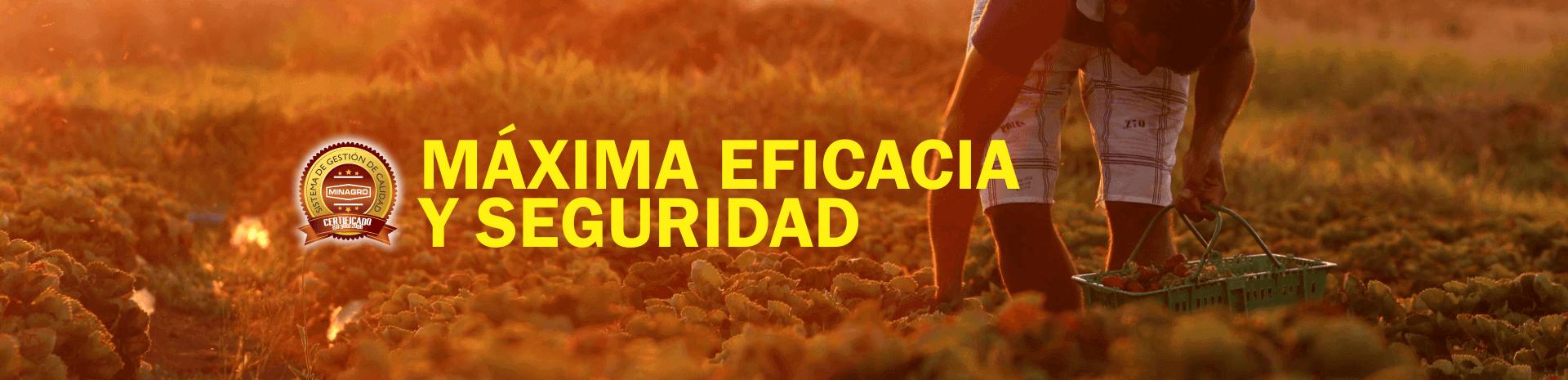 AgroquimicosenColombiaMinagroIndustriaQuimicaPlaguicidasInsecticidad