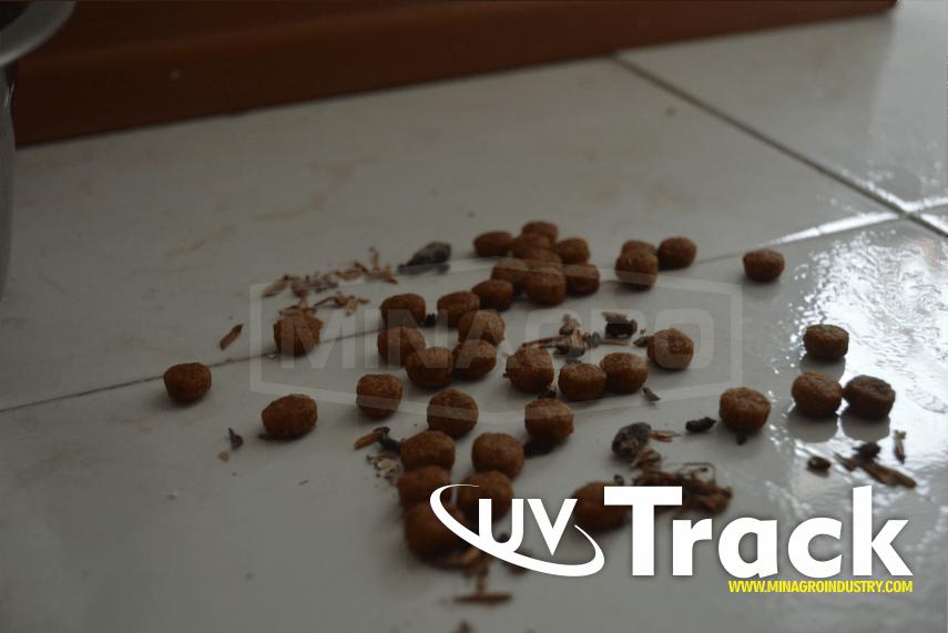 Heces de roedores en alimento concentrado